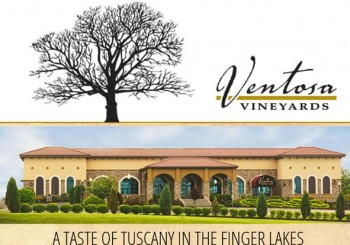 Featured Member News:  Ventosa Vineyards Wins Govenor's Cup