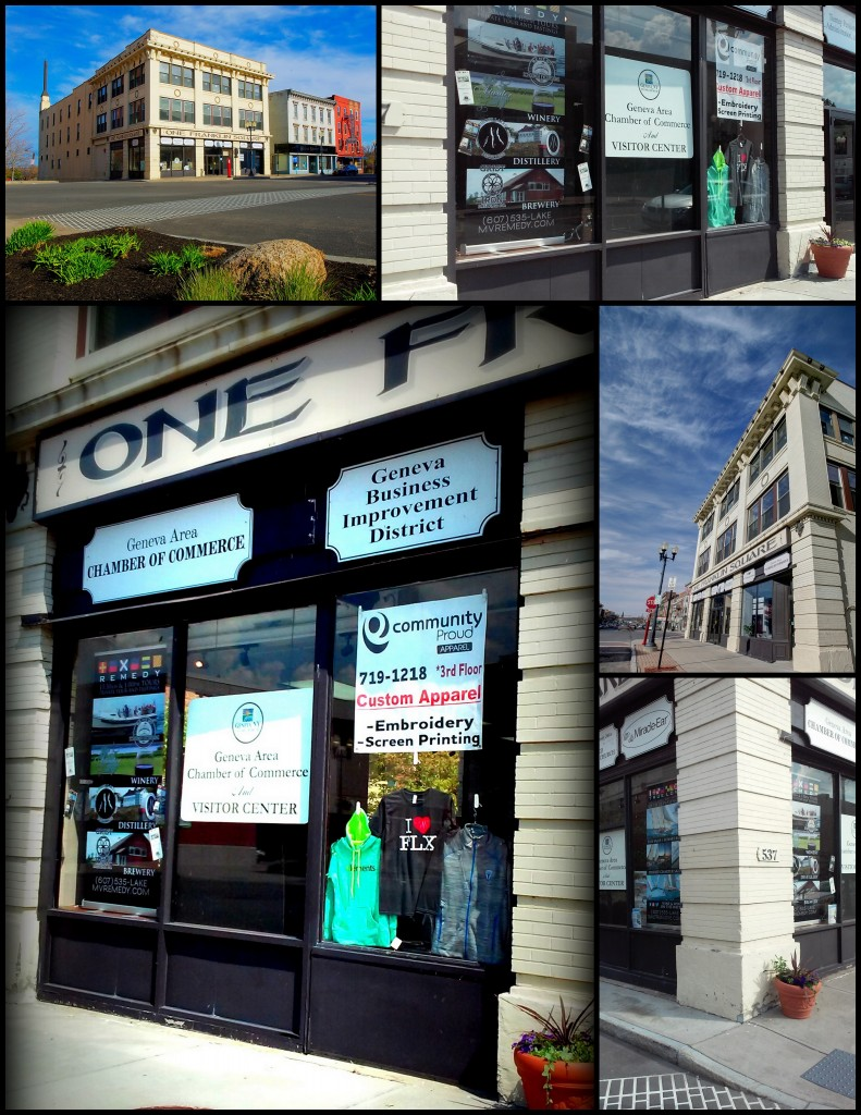 window displays collage